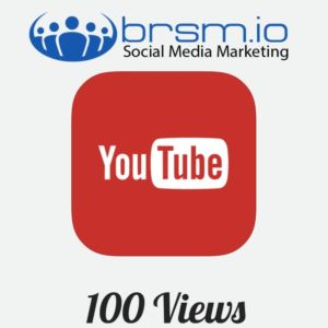 100 targeted YouTube views