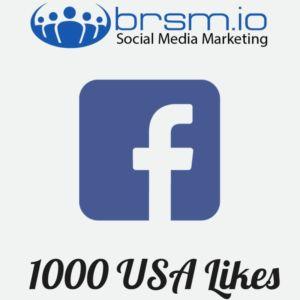 1000 USA Facebook Likes