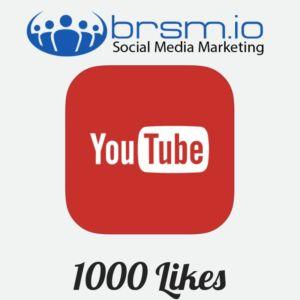 1000 youtube likes