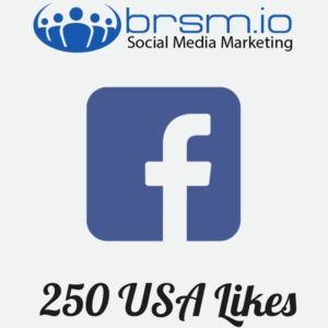 USA Facebook likes with BRSM