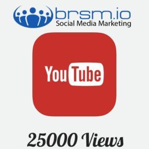 25000 targeted youtube views