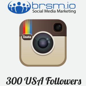 300 usa instagram followers
