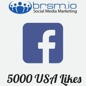 5000 usa facebook likes