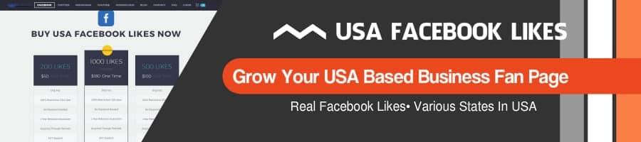 BRSM USA Facebook Likes